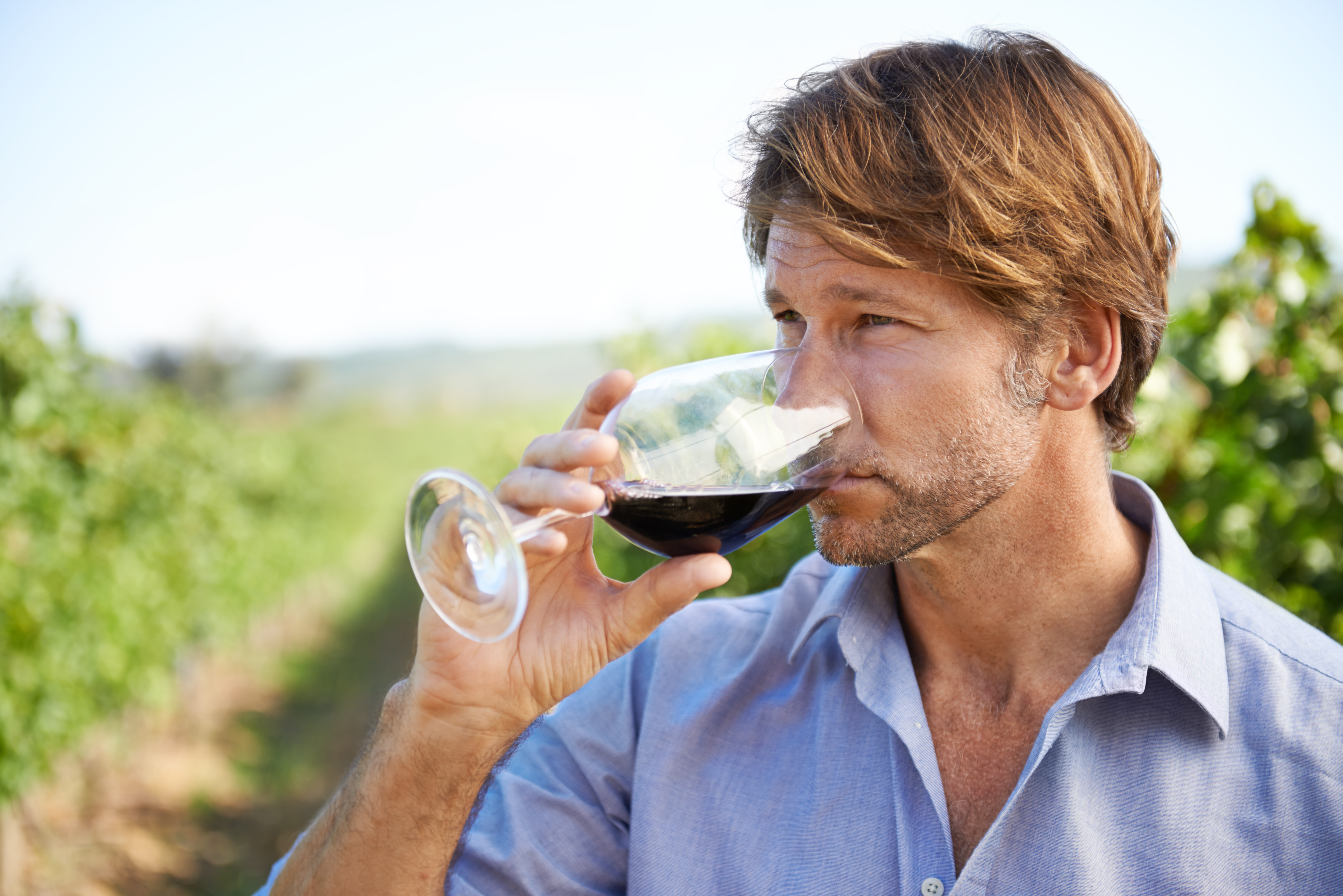 Shot of a handsome mature man tasting wine outside in a vineyard