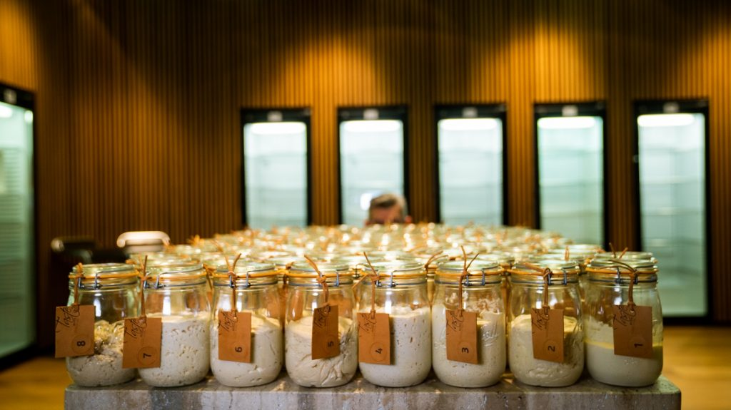 Sourdough: The Philosophy of Life in a Jar